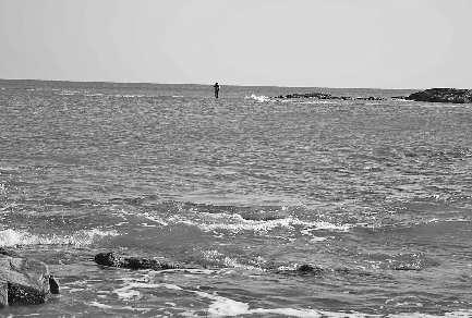 站在海边成熟qq头像男生
