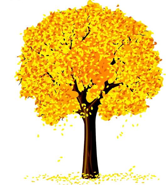 我是一棵秋天的树谱_秋天,秋高气爽我老了,脱下了绿色的衣服,穿上了黄色的衣服,我将要