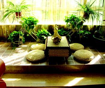 阳台种花 注意防水
