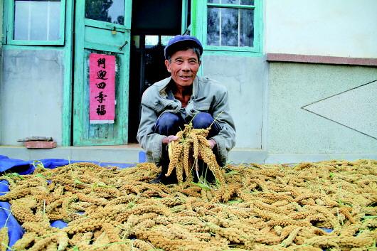 小米+乡村游,这个千年古村不一样