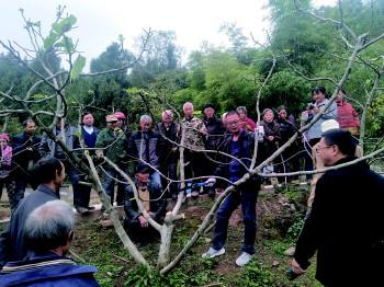 http://www.cqsybj.com/chongqingxinwen/87101.html
